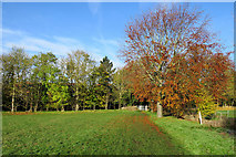 TL4352 : Hauxton: on the path to Hauxton Mill in November by John Sutton