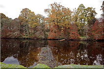 NH5243 : Artificial stand on the River Beauly by Julian Paren