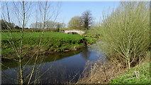 SJ7667 : Holmes Chapel - Hermitage Bridge & River Dane by Colin Park