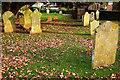 SX8860 : Headstones, Paignton churchyard by Derek Harper