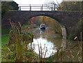 SP7389 : Sedgley's Bridge No 9 by Mat Fascione