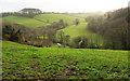 SX7056 : Valley near North Huish by Derek Harper