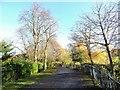 NZ2561 : Path in Saltwell Park by Robert Graham