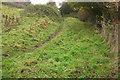 ST5467 : Monarch's Way in Little Down Wood by Derek Harper