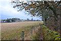 NN9557 : Field edge path to Edradour by Jim Barton