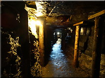G9214 : Arigna Mining Experience - walkway by Colin Park