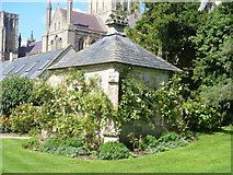 ST5545 : Bishop's Palace, Wells [17] by Michael Dibb