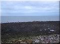 NX9722 : Rocky foreshore near Lowca by JThomas