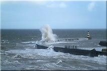 NZ4349 : Force 6 northerly by Gordon Hatton