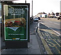 ST3090 : Subway Christmas advert on a Malpas Road bus shelter, Newport by Jaggery