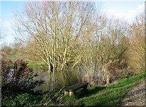 TG2105 : Seat beside the River Yare by Evelyn Simak