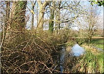 TG2105 : A drainage ditch on Marston Marsh by Evelyn Simak