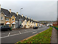 W6672 : Row of houses, Sunvalley Drive, Cork by Robin Webster