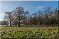 TQ0652 : Hatchlands Park by Ian Capper
