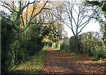 TG2105 : View west along Marston Lane by Evelyn Simak