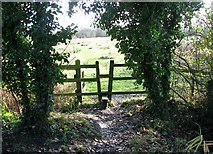 TG2105 : Access to Marston Marsh from Marston Lane by Evelyn Simak