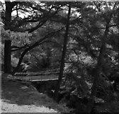 NY9027 : Winch Bridge by habiloid