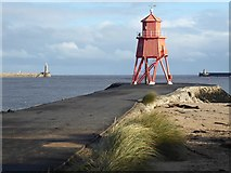 NZ3668 : South Groyne light by Oliver Dixon