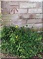 SP8689 : Benchmark on Wimborne Walk garage block by Phil Richards