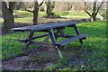SO8377 : Picnic table, Springfield Park, Kidderminster, Worcs by P L Chadwick
