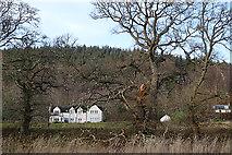 NJ1838 : Riverwood House by Anne Burgess