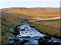 SD6975 : River Twiss, upstream from Ravenray Bridge by David Dixon