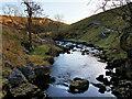 SD6975 : River Twiss, downstream from Ravenray Bridge by David Dixon