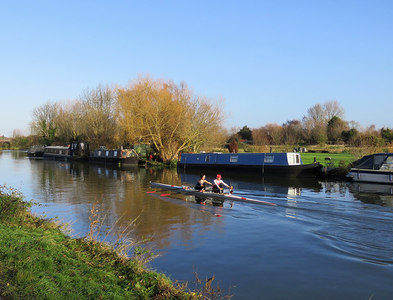 TL4860 : Sunday-morning scullers near Fen Ditton by John Sutton