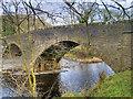 SD6691 : Sedbergh, New Bridge by David Dixon