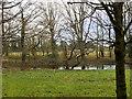 SD5140 : River Brock at Barton Grange by David Dixon
