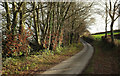 SS9734 : Blagdon Lane by Derek Harper
