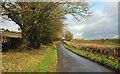 ST7059 : Withyditch Lane by Derek Harper