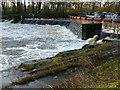 SE5944 : Naburn Weir by Alan Murray-Rust