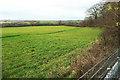 ST7171 : Field by Bath Road by Derek Harper