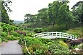 SW7627 : Footbridge over the pool, Trebah Garden by habiloid