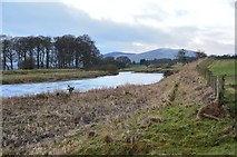 NT0034 : The Clyde upstream at Sandy's Ford by Jim Barton