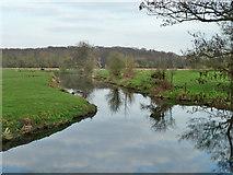 TQ0357 : Abbey Stream by Robin Webster