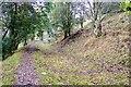 SO2584 : Offa's Dyke near Mardu by Jeff Buck