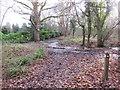 TQ3940 : Footpath marker near East Grinstead by Malc McDonald