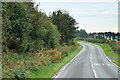 NS2308 : A719 near Morriston by David Dixon