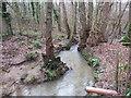 TQ3840 : Eden Brook, near East Grinstead by Malc McDonald