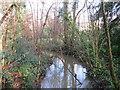 TQ3941 : Eden Brook near Dormans Park by Malc McDonald