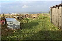 SD7224 : Bridleway heading North from Whetstone Gate Farm by Chris Heaton
