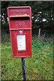 TR1332 : Postbox on Botolph's Bridge Road by Ian S