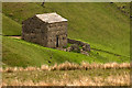 NY8803 : Field Barn, High Firth by P Gaskell