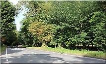 TL3936 : Cambridge Road, Barkway by David Howard