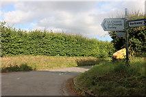 TL4037 : Little road to Abbotsbury by David Howard
