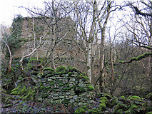NY9441 : The former Brandon Walls lead mine and ore works (7) by Mike Quinn