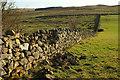 NT9716 : Wall, Hartside by Derek Harper