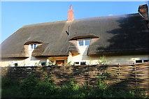 TL4427 : Thatched cottage in Barleycroft End by David Howard